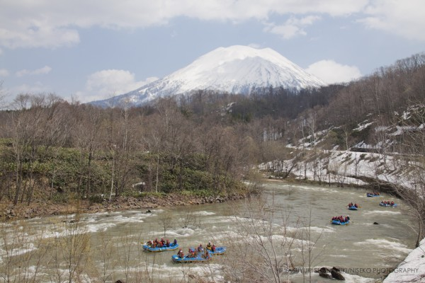 NISEKO SPRING SEASON STARTED-fresh green, blooming flowers and river activies.