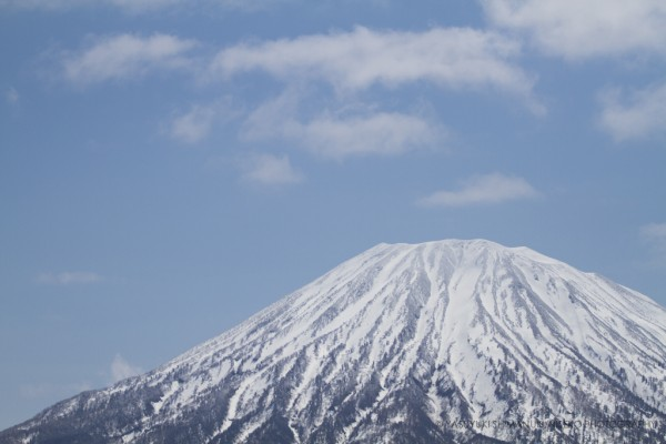 SPRING COLOUR IN NISEKO-the most beautiful fresh-green colour and white snow!