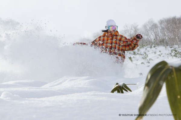 NISEKO POWDER - First day for Niseko powder shred!!