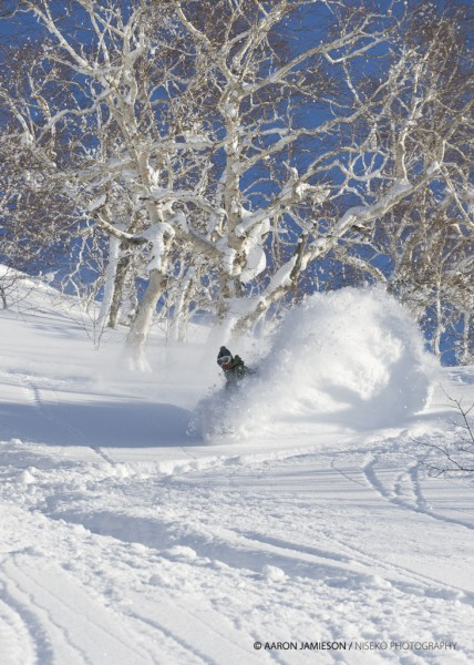 Yep - welcome to Niseko Beau.